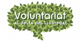 Logo voluntariat